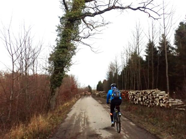 Jesienna przejażdżka rowerowa do Muzeum Ziemi Puckiej
