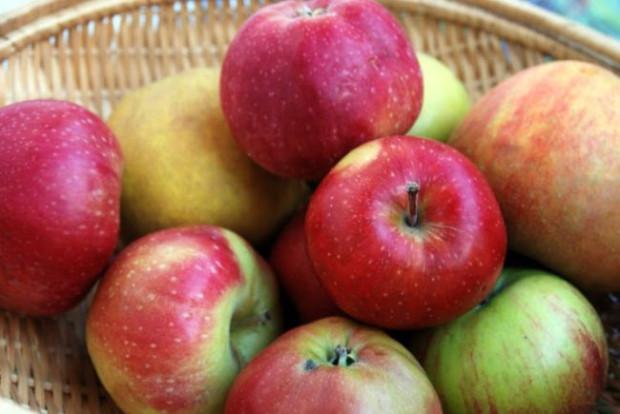 Odmian jabłek jest ponad 10 tysięcy, różnią się one pod względem zawartości witamin, ale dzięki temu każdy znajdzie coś dla siebie.