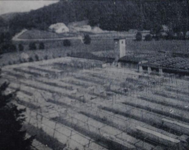 """Ferma zwierząt futerkowych, założona w 1928 r. w sąsiedztwie zwierzyńca (""""Danziger Neueste Nachrichten"""", 12-13.09.1931 r.)"""