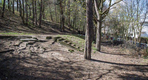 W Parku Urszulanek docelowo ma stanąć zabudowa, ale na razie teren ma zostać uporządkowany przez samych mieszkańców.