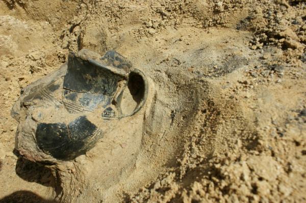W ciągu trzech tygodni badań, archeolodzy odkryli na Wiczlinie m. in. ponad tysiąc fragmentów ceramiki z okresu kultury pomorskiej.