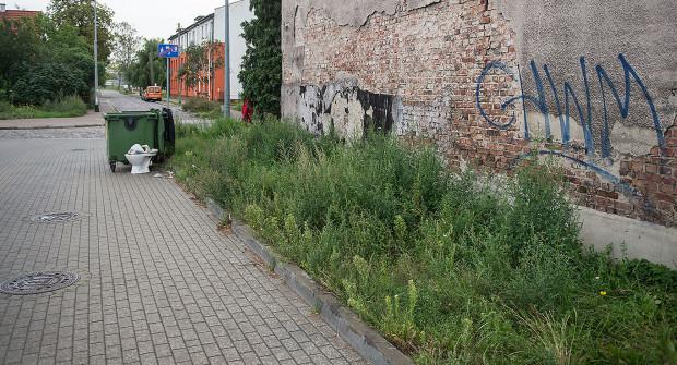 Mury budynków komunalnych zarasta trawa.