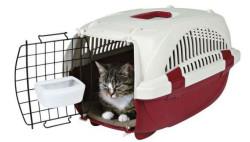 Przewozisz w taksówce zwierzę domowe? Musisz zaopatrzyć się w tzw. transporter.