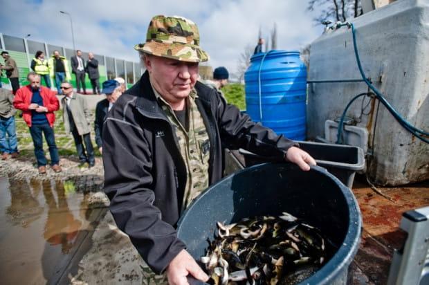 Za zarybianie gdańskich zbiorników retencyjnych, które mają status łowiska, odpowiada tutejszy okręg Polskiego Związku Wędkarskiego.