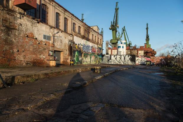 Festiwal Konopny odbędzie się w klubie Protokultura. W programie występy didżejskie, street-art, targ produktów konopnych oraz rozbudowane zaplecze edukacyjne na temat konopi przemysłowych.