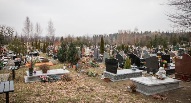Cmentarz Łostowicki to największą gdańska nekropolia o powierzchni ok. 50 ha.