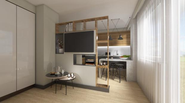 Koncepcja pierwsza. Ściana z półkami nie tylko dzieli strefy we wnętrzu, można na niej także powiesić telewizor.