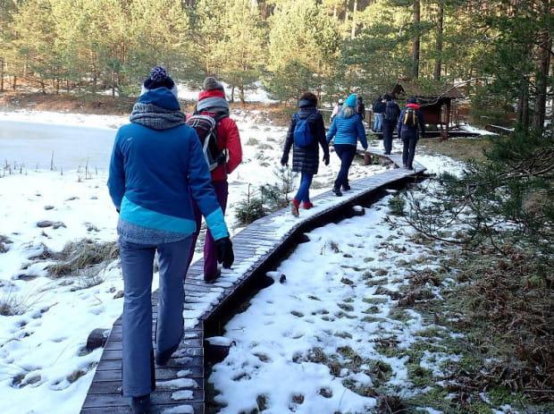 Zimowe wędrówki po Borach Tucholskich