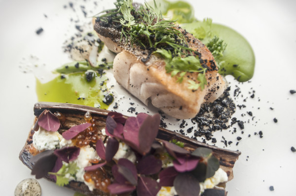 Skrei - arktyczny dorsz odławiany przez Norwegów - to ryba sezonowa, której posmakować można w okresie od stycznia do kwietnia. W Trójmieście serwowana jest m.in. w gdyńskich restauracjach: Sztuczka, Open Kitchen, Pieterwas i By the way.
