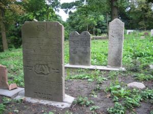Odnawiany w ostatnich latach cmentarz żydowski na Chełmie.