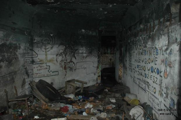 """Chociaż bunkry w Brzeźnie zostały wysprzątane dwa lata temu, to dzisiaj znów wymagają """"odświeżenia""""."""