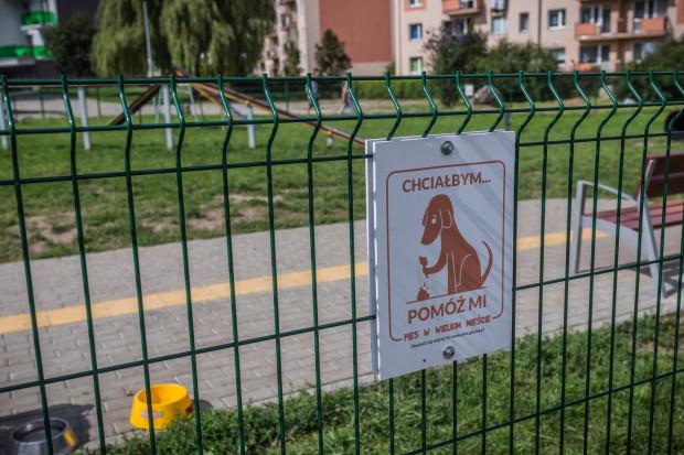 Gdyński wybieg dla psów został sfinansowany z budżetu obywatelskiego. Mieści się u zbiegu ulic Podchorążych i Godebskiego.