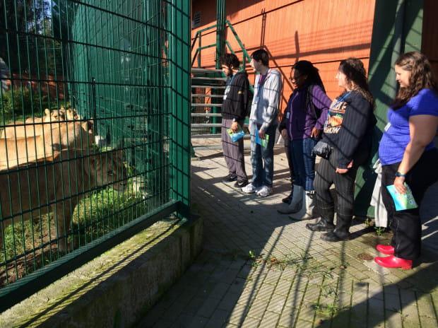 Amerykańscy studenci podczas praktyk w zoo.