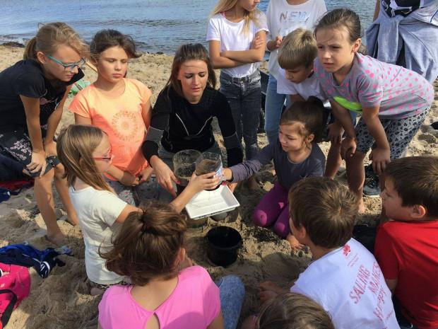 """Projekt """"Morsy odkrywcy"""" popularyzuje wśród dzieci i młodzieży wiedzę na temat Bałtyku."""