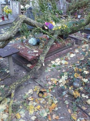 Wichura sporo szkód wyrządziła na cmentarzach.