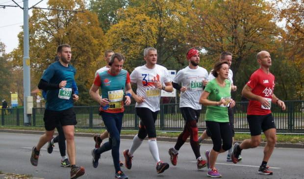 W niedzielę w Gdańsku odbędzie się AmberExpo Półmaraton, do którego zapisało się blisko 5000 osób. Sportowych imprez z nieco mniejszym rozmachem, ale często bezpłatnych, będzie jednak w Trójmieście w ten weekend dużo więcej.