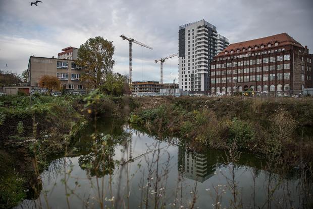 Teren przy Wałowej 40 jest już przebadany przez archeologów. Po uzyskaniu pozwolenia na budowę mogą od razu ruszać prace budowlane.