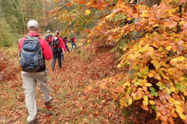 Jesienna wędrówka Szlakiem Kartuskim