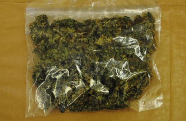 16-latek próbował przekonać policjantów, aby go wypuścili i wręczyć im za to woreczek z narkotykami.