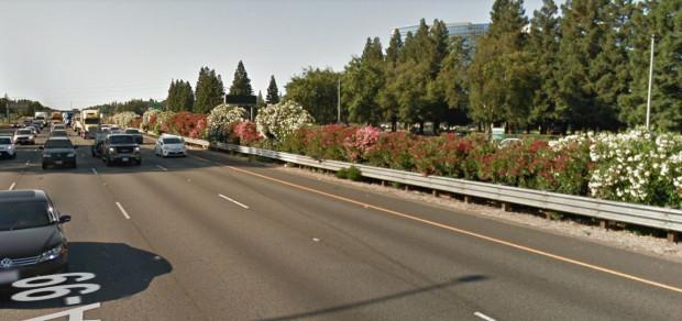 Żywopłot między barierami rozdzielającymi jezdnie na autostradzie w Sacramento w USA.