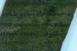 Powiększony fragment biblii znalezionej w gdańskiej latrynie.