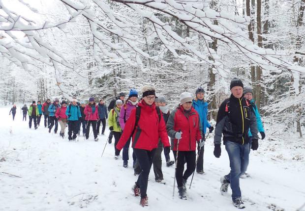 Lasy Mirachowskie w pięknej zimowej scenerii