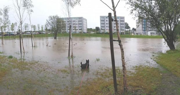 Obniżenie w terenie pomiędzy budynkami osiedla 18'36 przy ulicy Starogardziej. Po ulewnych deszczach woda rozlewa się w zagłębieniu między budynkami. Zdjęcie wykonane w lipcu 2017 roku.