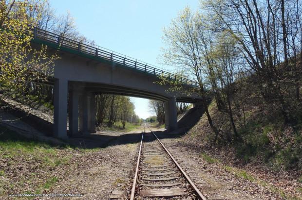 Linia kolejowa z Kokoszek w kierunku Kartuz.