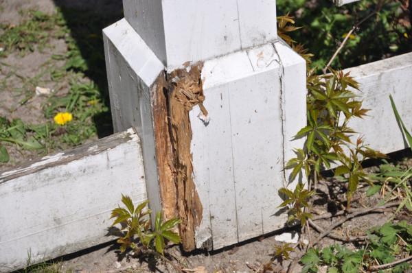 W wielu miejscach widać, że pergola wymaga pilnego remontu.