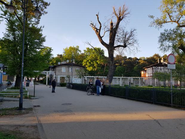 Poprawi się estetyka parku Brzeźnieńskiego.