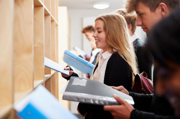 Edukacji niepublicznej bardzo często stawiany jest jednak zarzut, że działa ona na zasadzie: klient - sprzedaż usługi.