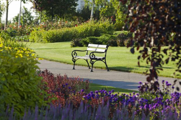 Ławka wśród zieleni kojarzy się ze spacerem w parku i odpoczynkiem na łonie natury. Takie miejsce można jednak stworzyć także na osiedlu mieszkaniowym. Na zdjęciu park przy inwestycji Ogrody Tesoro.