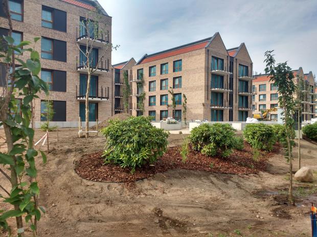 Kończy się realizacja osiedla Front Park nad Opływem Motławy. Pojawiają się pierwsze drzewa i krzewy. Założeniem architektów krajobrazu było nawiązanie do zielonego otoczenia rzeki.