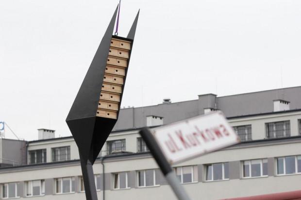 W 2014 roku w Gdańsku ustawiono wieże dla jerzyków. Ptaki jednak się w nich nie zagnieździły.