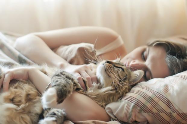 Każdy musi samodzielnie postanowić, czy spać ze swoim pupilem, czy od początku przyzwyczajać go do spania wyłącznie w legowisku. Ważna jest konsekwencja.