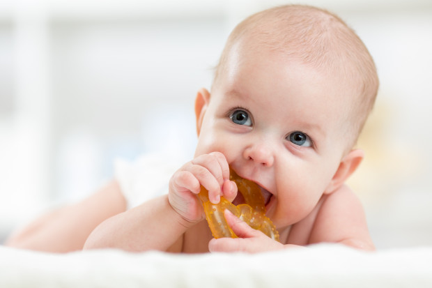 Wyrzynaniu się zębów mlecznych u malucha towarzyszy zazwyczaj okropny ból, z którym trudno sobie oseskowi poradzić. Trudno jest także jego opiekunom. Niektórym włos jeży się na głowie na samo wspomnienie ząbkowania dziecka.