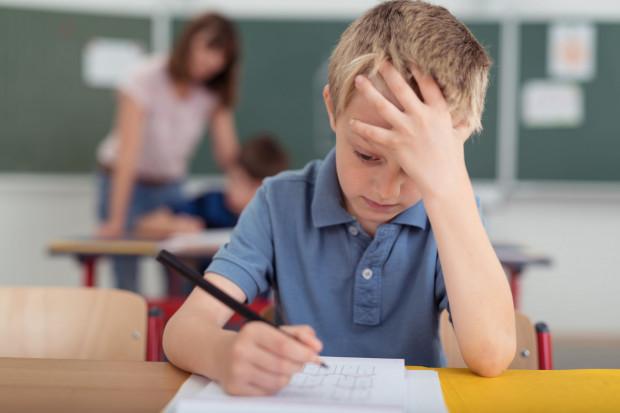 Obecny rok szkolny będzie rokiem ostatecznego wygaszenia gimnazjów i przeniesienia reformy do liceów.