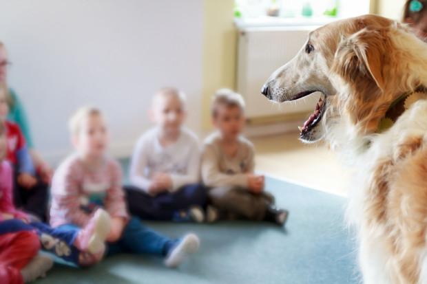 Dogoterapia w przedszkolu Tuptusie. Najważniejszym elementem pracy z psem są emocje, jakich dostarcza bliski kontakt ze zwierzęciem - mówi dyrektor przedszkola.