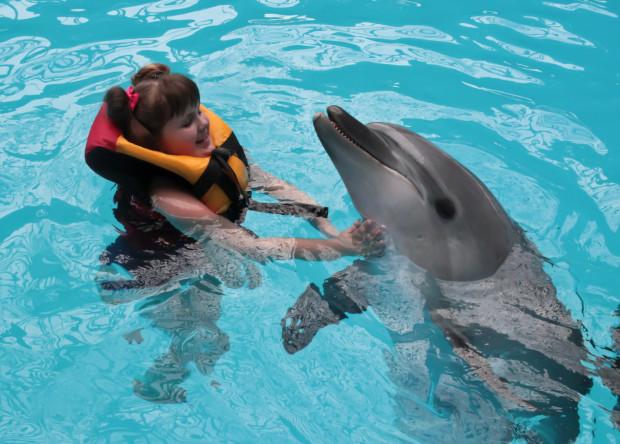 Delfinoterapia jest uznaną na świecie metodą rehabilitacji.