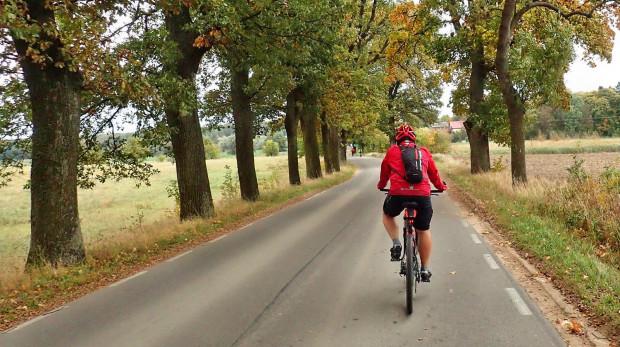 Rowerowy Szlak Kłodawski w dużej mierze wiedzie drogami asfaltowymi