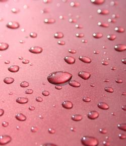 Potwierdzeniem tego, że karoseria auta została dobrze umyta i zabezpieczona są charakterystyczne krople wody po opadach deszczu, które nie spływają z pojazdu, gdy ten stoi.