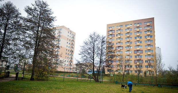 Park Kiloński