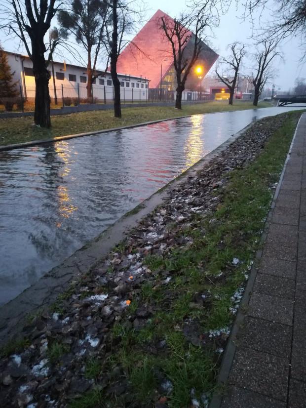 Bardzo wysoki poziom wody w Kanale Raduni na wysokości Muzeum II Wojny Światowej w Gdańsku