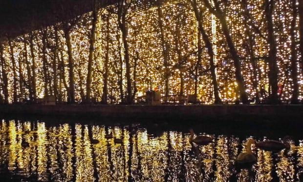 W najbliższych dniach wszystkie świąteczne iluminacje w parku Oliwskim zostaną zdemontowane.