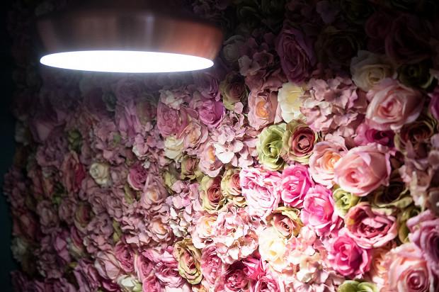 Ściana kwiatów w kawiarni Mimoza.