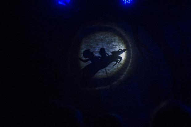 W spektaklu wykorzystano zarówno teatr lalek, jak i elementy teatru cieni.