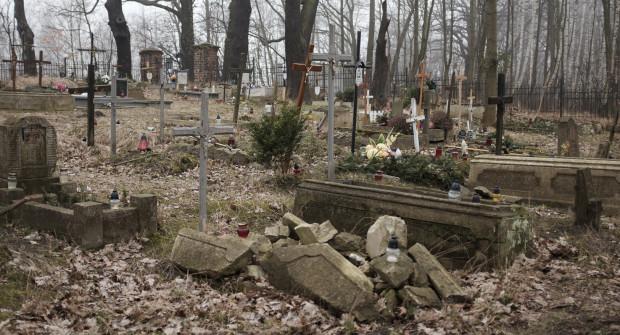 W sobotę będzie można posprzątać m.in. teren cmentarza w Orłowie.