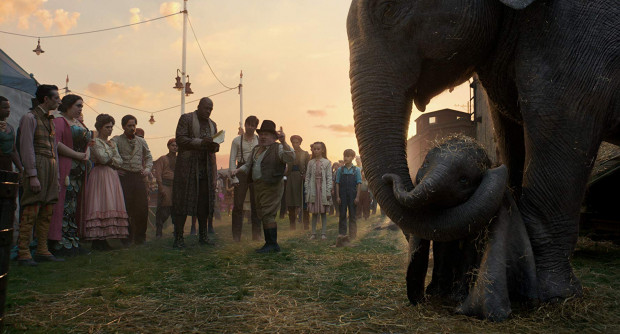 Mały słoń z nienaturalnie wielkimi uszami dość nieoczekiwanie staje się gwiazdą objazdowej trupy cyrkowej. Wkrótce pojawią się ludzie, którzy wobec zwierzaka nie będą mieli czystych intencji. Z pomocą przyjaciół Dumbo spróbuje zawalczyć o wolność.
