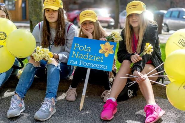 Atrakcje związane z Polami Nadziei będą się odbywać w różnych instytucjach, które tego dnia będą gościć wolontariuszy, zorganizują minifestyny lub przekażą hospicjom część swojego dochodu.
