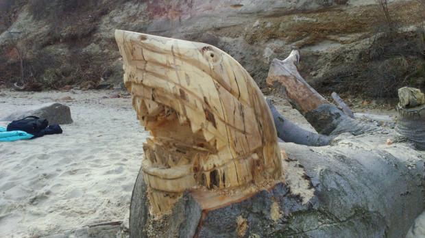 Prace tajemniczego artysty można podziwiać na plaży w Babich Dołach.